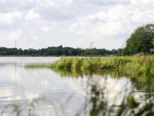 рыбалка в нижегородской области на налима