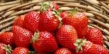 Медики назвали полезную ягоду для здоровья кишечника