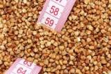 Как работает гречка-диета: секреты правильного похудения