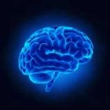 Сучасна психологія: завдання, основні напрями, проблеми та розвиток