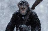 Война за планету обезьян: интересные факты о фильме