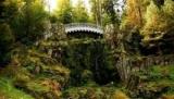 Черный лес, Германия: самые интересные места, куда пойти